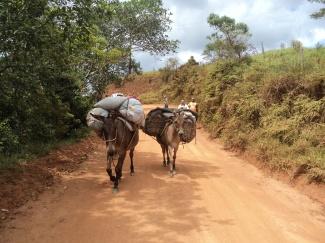 Tropa na zona rural de Barra do Choça