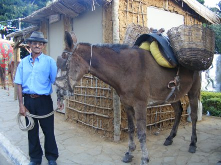 Rancho do Tropeiro, montado na Vila da Conquista, durante os festejos do Forró Pé de Serra do Periperi, organizado pela Prefeitura Municipal de Vitória da Conquista, em 2010. Em destaque o Tropeiro Zé Mosquito e um animal de carga.